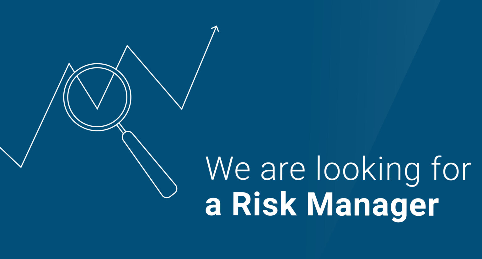 Risk Manager for Offshore Wind Projects
