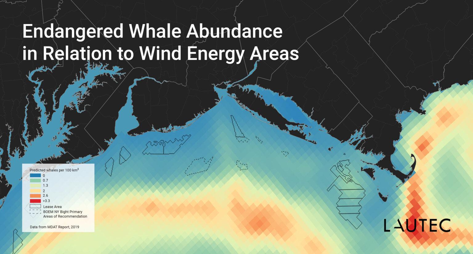 US Offshore Wind Whales Abundance